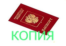 Займ по копии паспорта